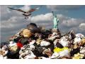 固废污染防治法草案拟健全生活垃圾分类制度,赋予地方管理权限